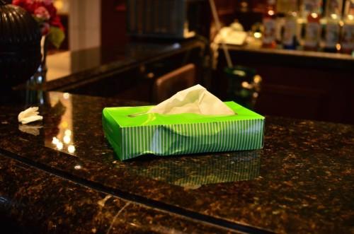この時は風邪を引いていてテーブルの上には終始箱ティッシュが鎮座していた