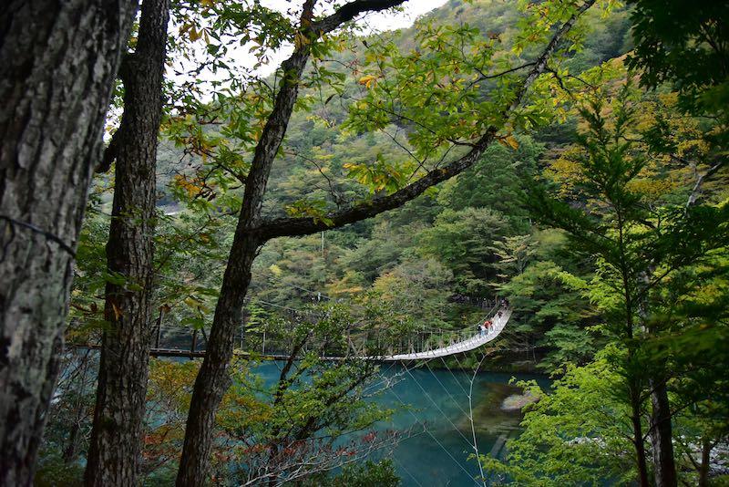 死ぬまでに一度は渡りたい吊り橋「夢の吊り橋」に行ってきた(寸又峡)