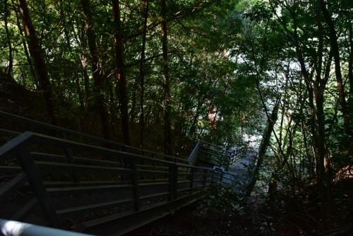 なかなかハードな階段だぜ
