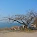 海津大崎キャンプ場で一泊して琵琶湖一周のキャンプツーリングに行ってきた