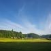 スーパーカブで田園風景を撮ってきた